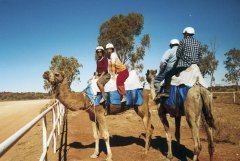Kamelritt in der Nähe von Uluru - Ute Scheller, Australien Reisen Anders